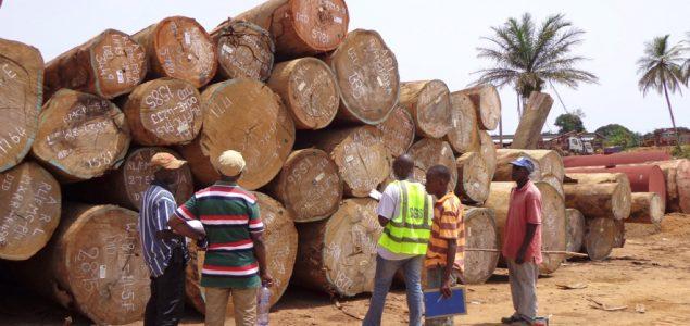 Ghana: Sharp drop in sawnwood export contract approvals