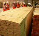 2015-a positive year for the U.S. lumber market