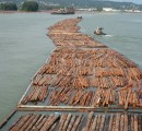 Canada's International Trade Minister to promote the country's wood exports in China