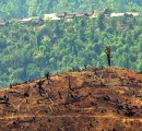 Myanmar government applies 10-year reforestation plan