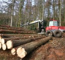 China invests big in Russia's timber processing industry