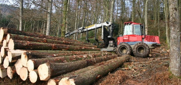 Q1 rising roundwood prices for Sweden