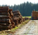 Alberta lumber producers hope for SLA renewal to avoid trade war