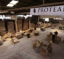 Proteak launches 280,000 m3/yr MDF plant in Mexico