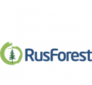 RusForest increases sawnwood production in Q4/2015