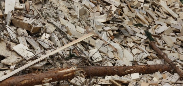 Calls for wood biomass to be removed from EU Renewable Energy Directive