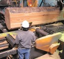 Western US sawmills announce production curtailments