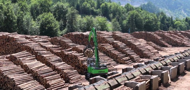 Austrian wood industry hit by climate change: 80% of the total annual timber harvesting is damaged wood