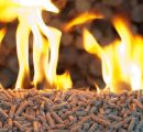Canada: Wood pellet industry could triple with slash piles