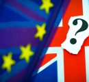 UK: Forestry industry divided on Brexit referendum