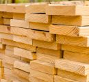 European softwood lumber exports to the USA double this year