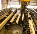 San Group to build a new sawmill in Canada