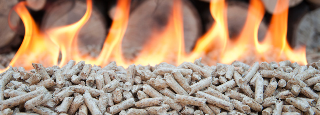 Eastern Europe's wood pellet production is growing dynamically