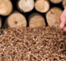 Prices for wood pellets in Germany started to descend in April