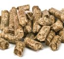 Pellet plant in Belarus doubles its capacity