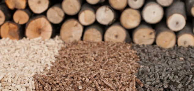 Japan: High increase of biomass fuel supply
