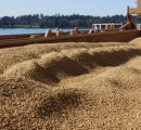 New record-high in 2015 for North American wood pellet exports