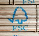 German timber companies launch campaign against FSC