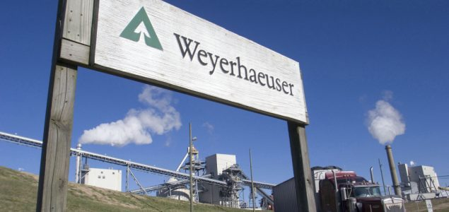 Weyerhaeuser to reduce lumber production by 20%