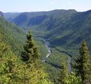 Resolute Forest Products files lawsuit against Greenpeace in US