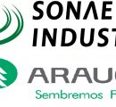 Sonae-Arauco to cease laminate operations in Horn, Germany