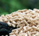 Wood pellets' price in Switzerland keeps on going up in December