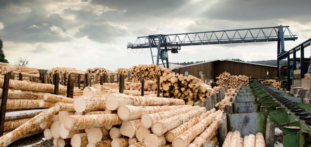 Lumber prices in the US on steep decline