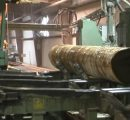 US: Pike Lumber to double lumber production