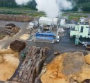 Largest European wood pellet producer boosts revenues by 76%
