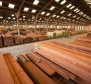 UK hardwood import market share