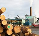 Swedish Norra Timber to raise sawmill production capacity