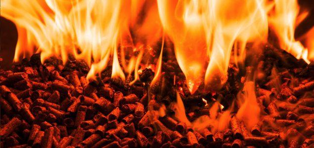 European Commission acknowledges risks of US wood pellet exports to EU