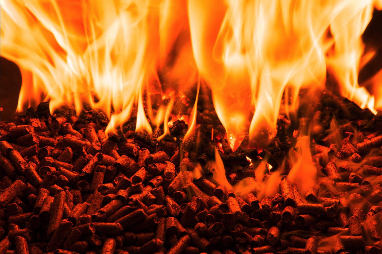 European Commission acknowledges risks of US wood pellet ...