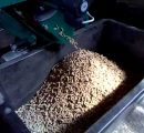 Germany: Record wood pellet production in 2019, stable prices