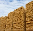 China: Imports of sawnwood drop, but prices rise