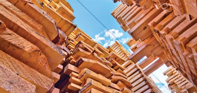 Global softwood sawmills register strong earnings