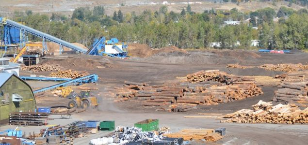 Tolko to curtail operations at Quest Wood sawmill citing high log costs and poor market conditions
