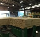 Georgia-Pacific to expand lumber production by 20% at Rome, Georgia facility