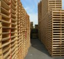 Wood domestic sector in Vietnam loses ground over foreign companies