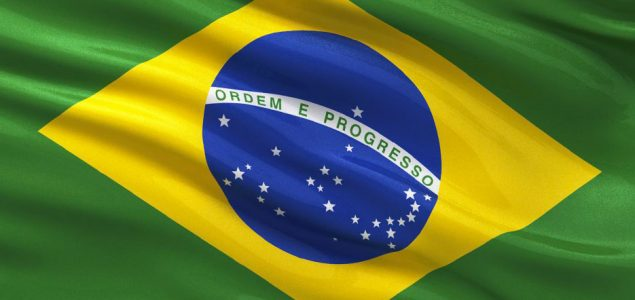 Brazil: Wood products exports on the rise in February