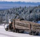 Alberta points attention to China if softwood lumber deal fails