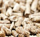 Current trends in Japanese and South Korean wood pellet demand