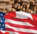 WTO partially rules in favor of Canada in the softwood lumber dispute with US
