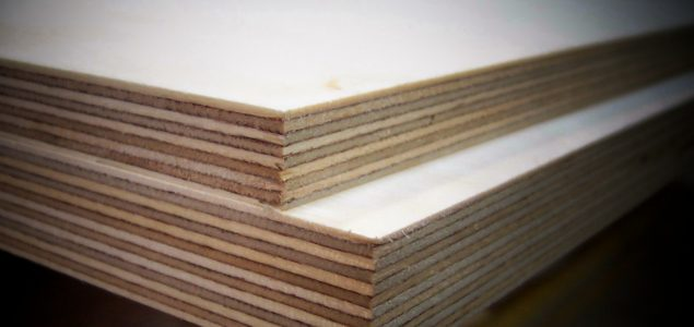 Polish company plans to invest 2 billion roubles in a plywood plant in Russia