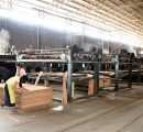 China: Top wood-based panel producing companies