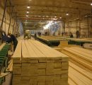 Swedish softwood lumber market forecast to rise in 2017 on production capacity increases