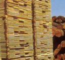 China: Prices of imported lumber in September 2020