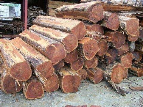 Ghana Export Prices For Logs Sawnwood Veneer Plywood In
