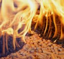 Rising wood pellet production in the US