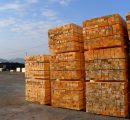 French timber trade benefits from rising construction trend